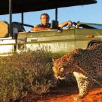 Tours & Safaris