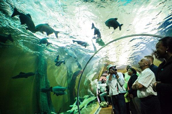 Zoos & Aquariums